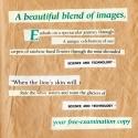ti_347_08-31-2012-1-hits-page-3
