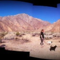 anza-boreggo-panorama-with-pups