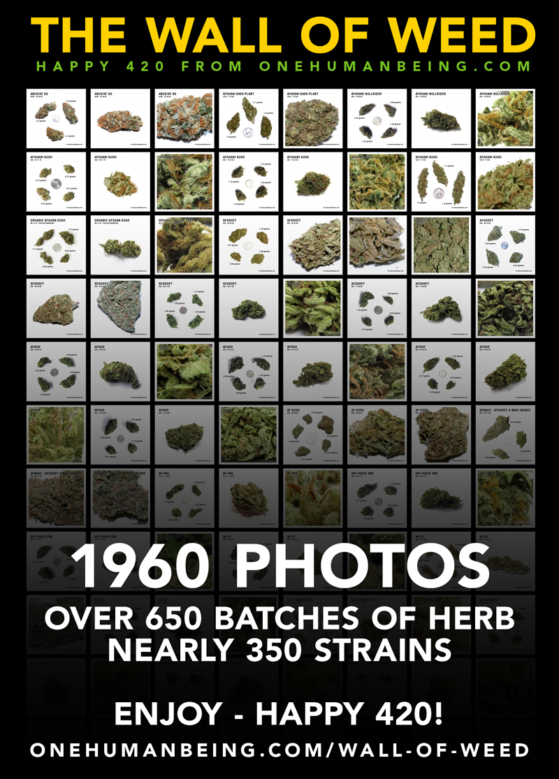 The Wall of Weed