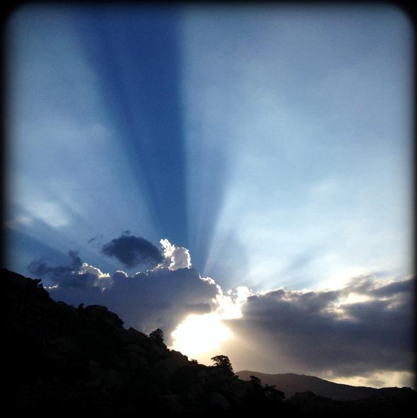 sunbeams-590px
