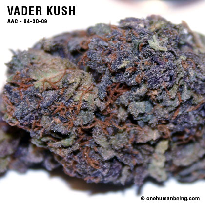 vaderkush_04_30_2009_full_2