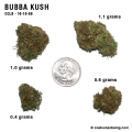 bubbakush_10_16_08_full_1.jpg