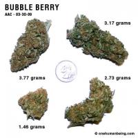 bubbleberry_03_30_2009_full_1.jpg