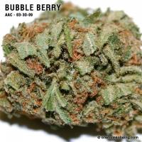 bubbleberry_03_30_2009_full_3.jpg