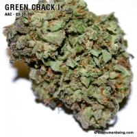 greencrack_one_03_30_2009_full_3.jpg