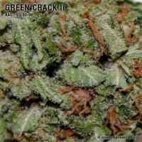 greencrack_two_03_30_2009_full_2.jpg