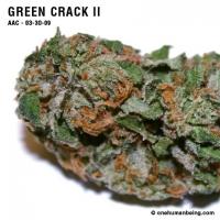 greencrack_two_03_30_2009_full_3.jpg