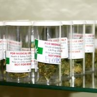 1_grams_of_herb_2.jpg
