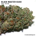 blackmasterkush_10_16_08_full_2.jpg