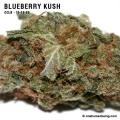 blueberrykush_10_16_08_full_2.jpg