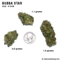 BubbaStar_9_19_08_full_1.jpg