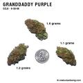 GranddaddyPurple_9_30_08_full_1.jpg
