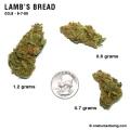 Lambsbread_9_7_08_full_1.jpg