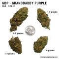 granddaddypurple_10_16_08_full_1.jpg