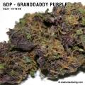 granddaddypurple_10_16_08_full_2.jpg