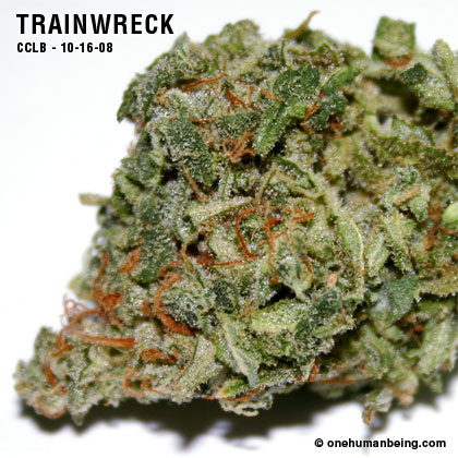 Trainwreck | The MMJ Project